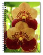 Joy And Happyness Spiral Notebook
