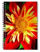 Joyful ... Spiral Notebook