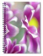 Joyful Sisters. Gentle Floral Macro Spiral Notebook
