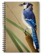 JR Spiral Notebook