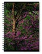 Judas In The Forest Spiral Notebook