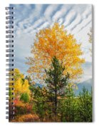 Jughandle Mountain Spiral Notebook