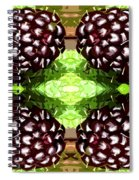 Juicy Fruity Spiral Notebook