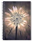 July 1 2010 Spiral Notebook