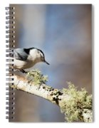 Jump - White-breasted Nuthatch Spiral Notebook
