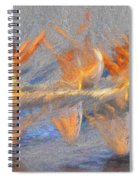 Jumped Over The Freeway - Dancing California Fires Spiral Notebook