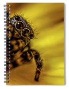 Jumping Spider Spiral Notebook