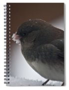 Junco In Snow Spiral Notebook