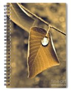 June 18 2010 Spiral Notebook