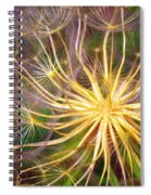 June 21 2010 Spiral Notebook
