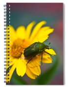 June Beetle Spiral Notebook