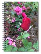 June Rose #2 Spiral Notebook