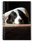 Junebug Spiral Notebook