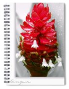 Jungle King Ginger Spiral Notebook