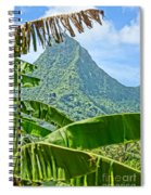 Jungle Within Spiral Notebook