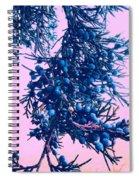 Juniper Spiral Notebook