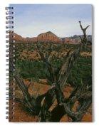 Juniper Tree Spiral Notebook