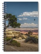 Juniper Tree On A Mesa Spiral Notebook