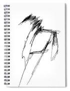 Just A Horse Sketch Spiral Notebook