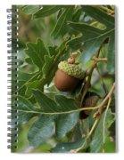Just A Nut Spiral Notebook