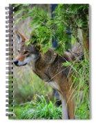 Just A Peek Around The Corner Spiral Notebook