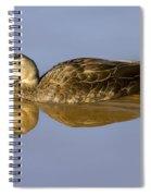Just A Sip Spiral Notebook