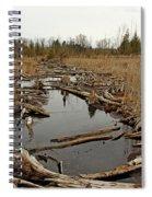 Just A Trickle Spiral Notebook