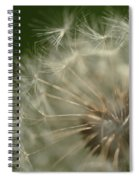 Just A Weed Spiral Notebook