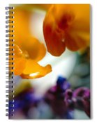Just As It Is... Spiral Notebook