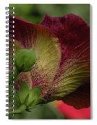 Just Beautiful Spiral Notebook