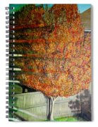 Just Before Fall Spiral Notebook