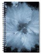 Blue Hibiscus Floral Portrait Spiral Notebook