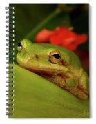 Just Chill Spiral Notebook
