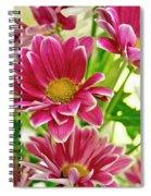 Just Daintiness. Spiral Notebook