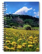Just Dandy Spiral Notebook