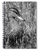 Just Ducky Bw Spiral Notebook