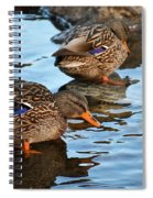 Just Ducky Spiral Notebook