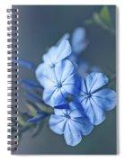Just Feeling Blue Spiral Notebook