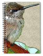 Just Hangin' Out Spiral Notebook