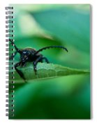 Just Looking For Another Beetle Spiral Notebook