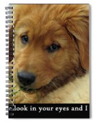 Just One Look Spiral Notebook
