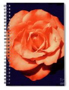 Just Peachy Spiral Notebook