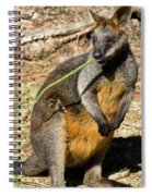 Just Snacking Spiral Notebook
