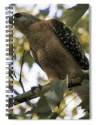 Just Spotted Dinner Spiral Notebook