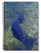 Just Swimming Around Spiral Notebook