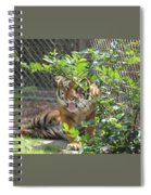 Just Waking Up Spiral Notebook