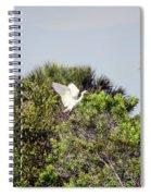 Juvenile Little Blue Spiral Notebook
