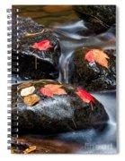 Kadunce River Spiral Notebook