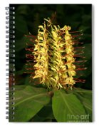 Kahili Ginger Spiral Notebook