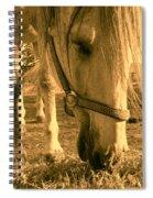 Kahn I Spiral Notebook